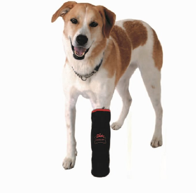 [http://www.petsfit.co.kr/product/detail.html?product_no=24&cate_no=58&display_group=2][http://www.petsfit.co.kr/product/detail.html?product_no=25&cate_no=1&display_group=3]